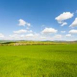 Italiaans landschap met weiden stock foto's