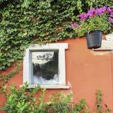 Italiaans stijlvenster met bloem Stock Afbeelding