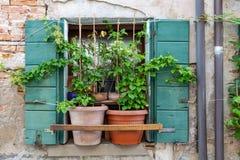 Italiaans venster met installaties stock fotografie