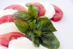 Italiaans voedsel: caprese Royalty-vrije Stock Foto's