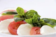 Italiaans voedsel: caprese Stock Afbeelding