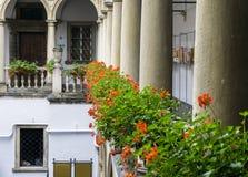 Italiaanse binnenplaats met bloemen Stock Fotografie