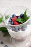 Italiaanse cotta van dessertpanna royalty-vrije stock fotografie