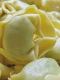 Italiaanse deegwarentortellini Royalty-vrije Stock Afbeelding