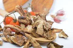 Italiaanse droge porcinipaddestoelen en tomaat Stock Fotografie