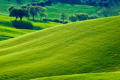 Italiaanse gebieden Stock Foto