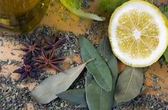 Italiaanse kruiden en kruiden Stock Afbeeldingen