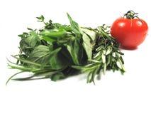 Italiaanse kruiden en tomaat royalty-vrije stock foto