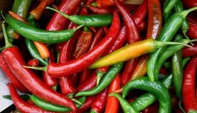 Italiaanse lange hete peper, of lange het Italiaans hots, enkel geplukt in een mand stock afbeelding