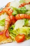 Italiaanse salade Royalty-vrije Stock Foto's