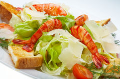 Italiaanse salade Stock Afbeelding