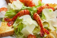 Italiaanse salade stock foto