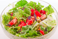 Italiaanse salade Royalty-vrije Stock Fotografie