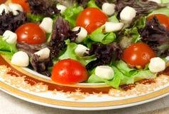 Italiaanse salade met mozarella royalty-vrije stock fotografie