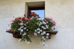 Italiaanse stijlvensterbank met kleurrijke bloemen Stock Afbeeldingen