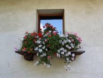 Italiaanse stijlvensterbank met kleurrijke bloemen Royalty-vrije Stock Afbeeldingen