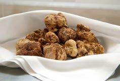 Italiaanse witte truffels Royalty-vrije Stock Foto's