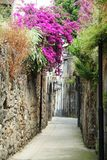 Italian Alley. An alleyway with flowers in Sorrento, Italy Royalty Free Stock Image