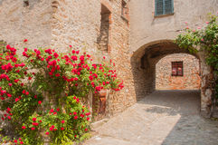 Italian alley. A typical italian narrow alley inside an historical village in piedmont Royalty Free Stock Image