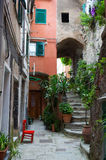 Italian Alley with Plants Stock Images