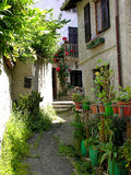 Italian alleyway with roses. Alleyway in an Italian village, leading to a doorway with roses.  Rocca Grimalda, Italy Stock Photos
