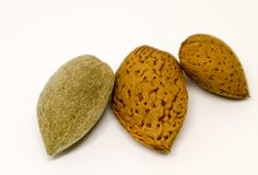 Italian almonds. Still life on almonds from italian production royalty free stock images