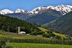 Italian Alpe-Prato del Stelvio Fotografia Stock
