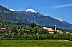 Italian Alpe-Prato del Stelvio Fotografia Stock Libera da Diritti