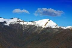 Italian Alps stock images