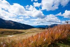 Italian Alps panorama Stock Images