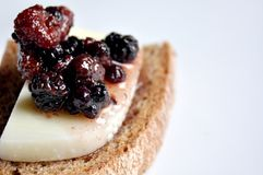 Italian appetizer: cheese and fruit chutney Stock Image