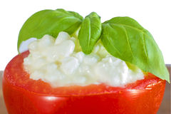 Italian appetizer tomato with cheese and basil Royalty Free Stock Images