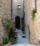 Italian architecture. Steps down to a very narrow alley between ancient houses with flowers hanging outdoors in Italy Royalty Free Stock Photo