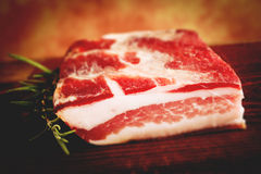 Italian bacon pancetta - tilt shift selective focus effect Royalty Free Stock Image