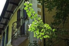 Italian balcony Stock Photo