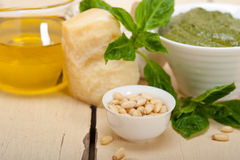 Italian basil pesto sauce ingredients Royalty Free Stock Photo