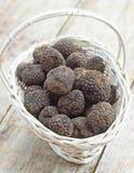 Italian Black Summer Truffles Stock Image