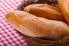 Italian bread Stock Images