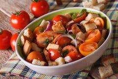 Italian bread salad - panzanella close-up on the table. horizont Royalty Free Stock Image