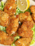 Italian Breaded Chicken with Parmesan Cheese Stock Photos