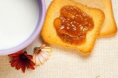 Italian breakfast. Typical italian breackfast: Jam, crispbread and a cup of good milk Stock Photography