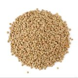Brown Italian Lentils Royalty Free Stock Image