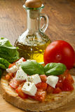 Italian bruschetta. With fresh tomatoes, basil, garlic, olive oil and cheese Stock Photography