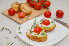 Italian bruschetta with soft cheese, tomatoes, rosemary and fresh salad on the plate. Space for text Royalty Free Stock Photo