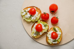 Italian bruschetta with soft cheese, tomatoes, rosemary and fresh salad on the plate. Space for text Stock Photo