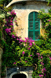 Italian buildings with window shutters and pink bougainvilleas Royalty Free Stock Image