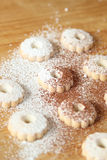 Italian canestrelli biscuits sprinkled with powdered sugar and cocoa Stock Photography