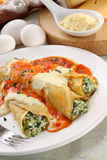 Italian Cannelloni Royalty Free Stock Image