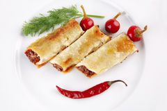 Italian cannelloni with mince meat Stock Photos