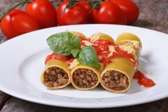 Italian cannelloni pasta with meat, tomato sauce, cheese Royalty Free Stock Image